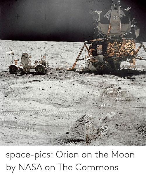 pics: space-pics:  Orion on the Moon by NASA on The Commons