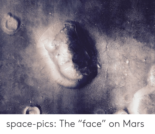 "Tumblr, Blog, and Mars: space-pics:  The ""face"" on Mars"