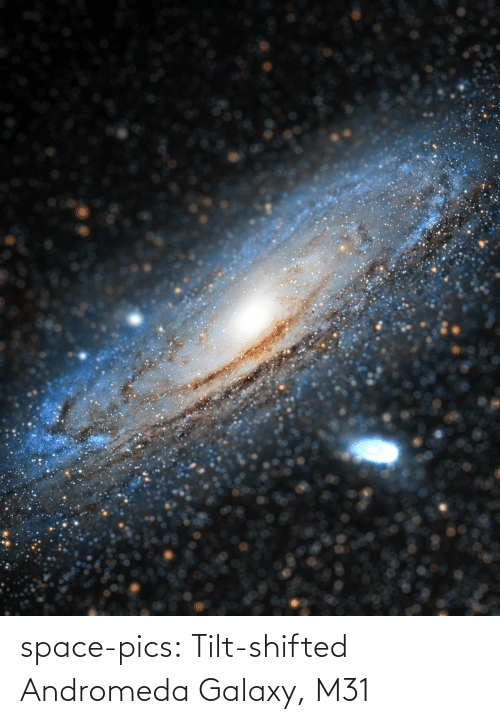 galaxy: space-pics:  Tilt-shifted Andromeda Galaxy, M31
