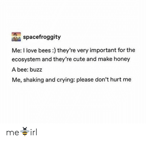 Crying, Cute, and Love: spacefroggity  Me: I love bees:) they're very important for the  ecosystem and they're cute and make honey  A bee: buzz  Me, shaking and crying: please don't hurt me me🐝irl