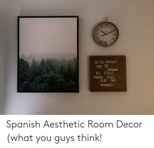 room: Spanish Aesthetic Room Decor (what you guys think!