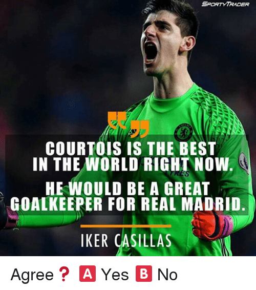 Iker Casillas: SPaRTY TRADER  COURTOIS IS THE BEST  IN THE WORLD RIGHT NOW.  HE WOULD BE A GREAT  GOALKEEPER FOR REAL MADRID.  IKER CASILLAS Agree❓ 🅰️ Yes 🅱️ No