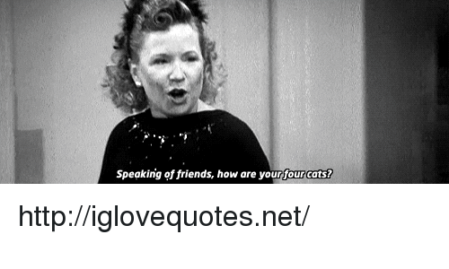 Cats, Friends, and Http: Speaking of friends, how are your four cats? http://iglovequotes.net/