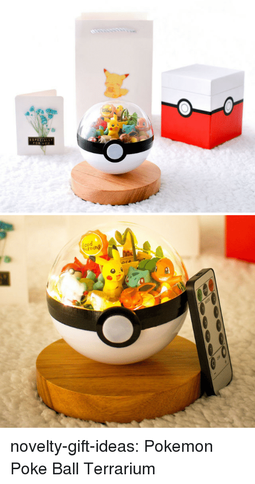 Pokemon, Tumblr, and Blog: SPECIAL   ing novelty-gift-ideas:  Pokemon Poke Ball Terrarium