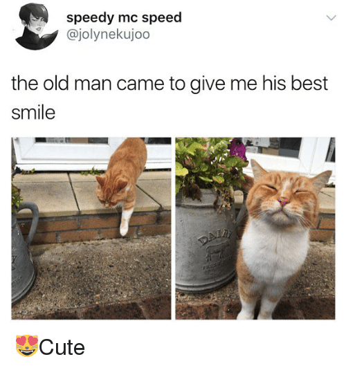 Memes, Old Man, and Best: speedy mc speed  @jolynekujoo  the old man came to give me his best  smile 😻Cute