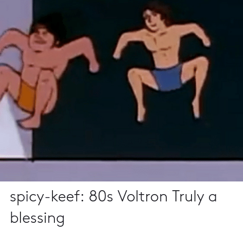 Keef: spicy-keef:  80s Voltron Truly a blessing