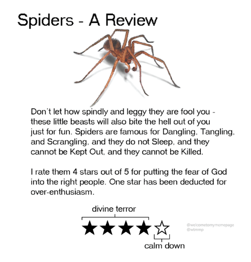 Dank, God, and Spiders: Spiders - A Review  Don't let how spindly and leggy they are fool you  these little beasts will also bite the hell out of you  just for fun. Spiders are famous for Dangling. Tangling.  and Scrangling, and they do not Sleep, and they  cannot be Kept Out, and they cannot be Killed.  I rate them 4 stars out of 5 for putting the fear of God  into the right people. One star has been deducted for  over-enthusiasm  divine terror  @welcometomymemepage  @wtmmp  calm down