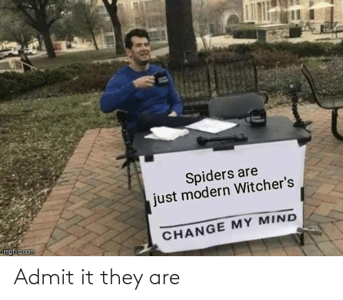 Witchers: Spiders are  just modern Witcher's  imgflip.com  CHANGE MY MIND Admit it they are