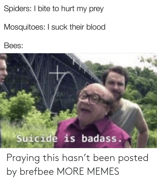 Badass: Spiders: I bite to hurt my prey  Mosquitoes: I suck their blood  Bees:  Suicide is badass. Praying this hasn't been posted by brefbee MORE MEMES