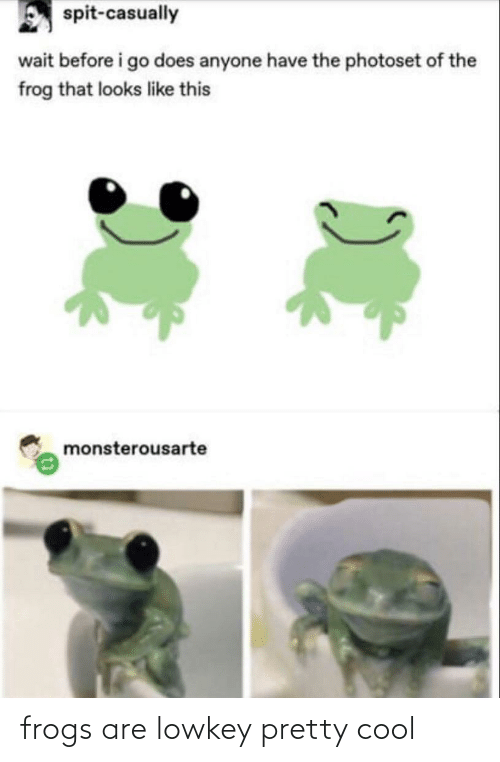 Cool, Lowkey, and Frog: spit-casually  wait before i go does anyone have the photoset of the  frog that looks like this  monsterousarte frogs are lowkey pretty cool