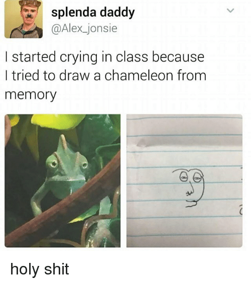 Holi Shit: splenda daddy  @Alex jonsie  I started crying in class because  I tried to draw a chameleon from  memory holy shit