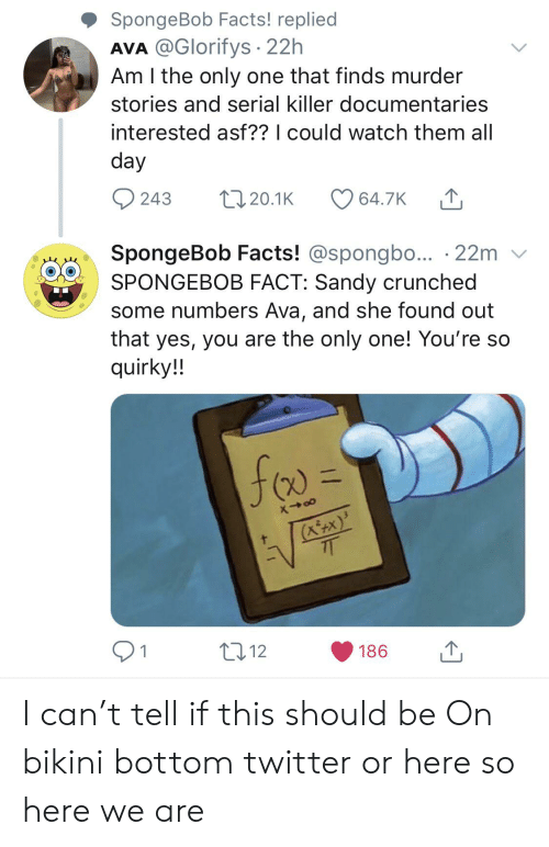 Facts, SpongeBob, and Twitter: SpongeBob Facts! replied  AVA @Glorifys 22h  Am I the only one that finds murder  stories and serial killer documentaries  interested asf?? I could watch them all  day  243  L20.1K  64.7K  SpongeBob Facts! @spongbo... 22m  SPONGEBOB FACT: Sandy crunched  some numbers Ava, and she found out  that yes, you are the only one! You're so  quirky!!  (KtX)  7T  t12  1  186 I can't tell if this should be On bikini bottom twitter or here so here we are