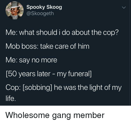 Life, Gang, and Say No More: Spooky Skoog  @Skoogeth  Me: what should i do about the cop?  Mob boss: take care of him  Me: say no more  [50 years later - my funeral]  Cop: [sobbing] he was the light of my  life. Wholesome gang member