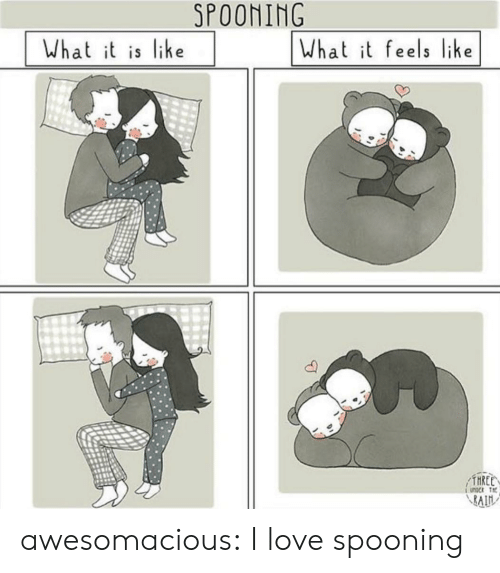 Love, Tumblr, and Blog: SPOONING  What t is like  What it feels like awesomacious:  I love spooning