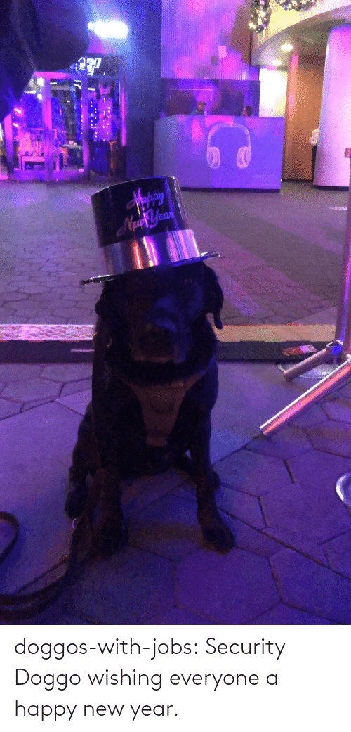 Jobs: Sppy  NaYean doggos-with-jobs:  Security Doggo wishing everyone a happy new year.