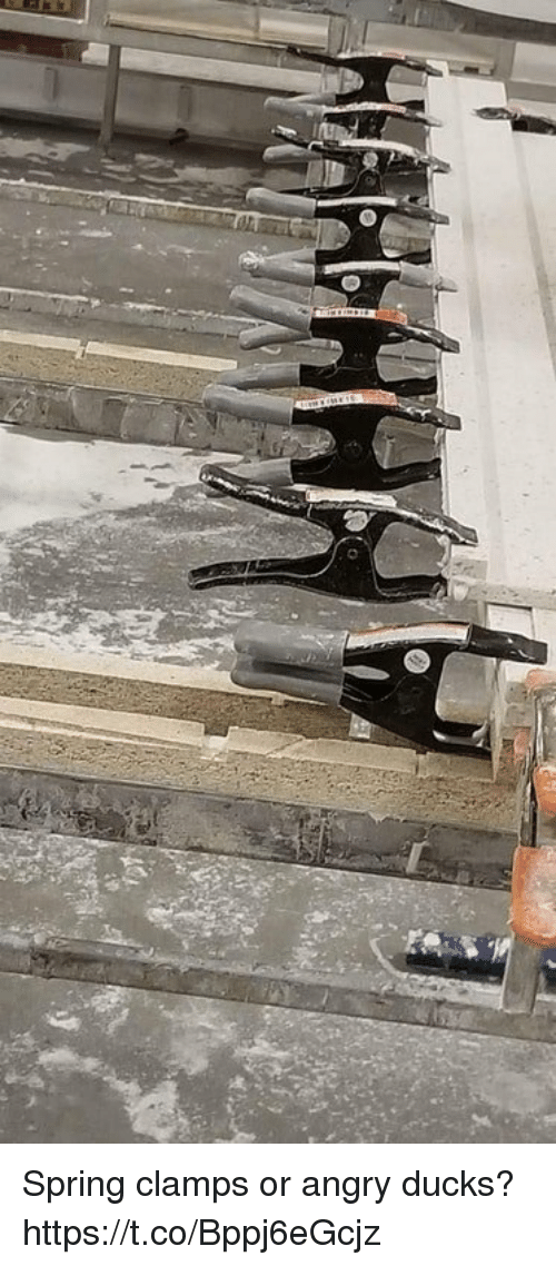 Ducks, Spring, and Angry: Spring clamps or angry ducks? https://t.co/Bppj6eGcjz