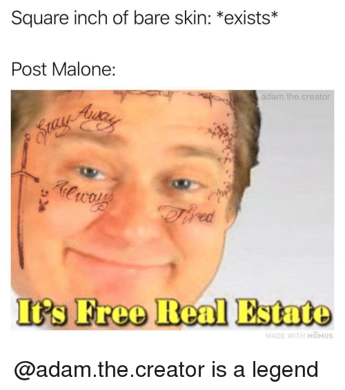 iis: Square inch of bare skin: *exists*  Post Malone:  adam.the.creator  Iis Free Real Estate  MADE WITH MOMUS @adam.the.creator is a legend