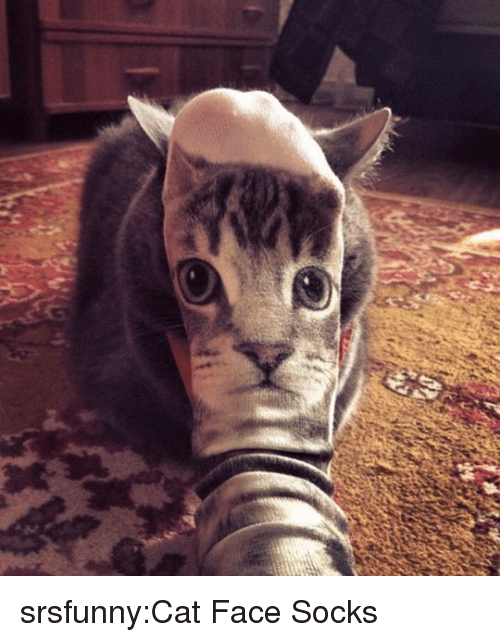 Tumblr, Blog, and Http: srsfunny:Cat Face Socks