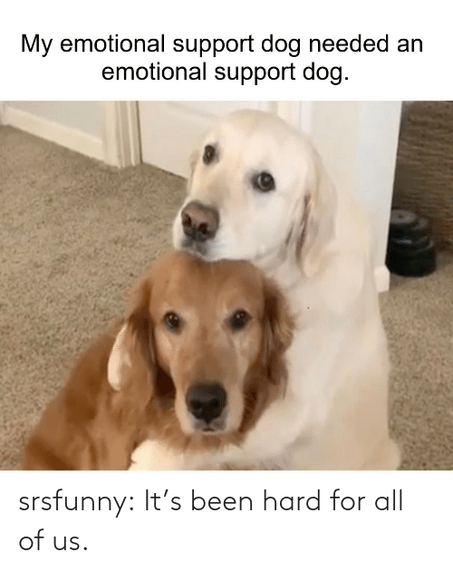 All Of: srsfunny:  It's been hard for all of us.