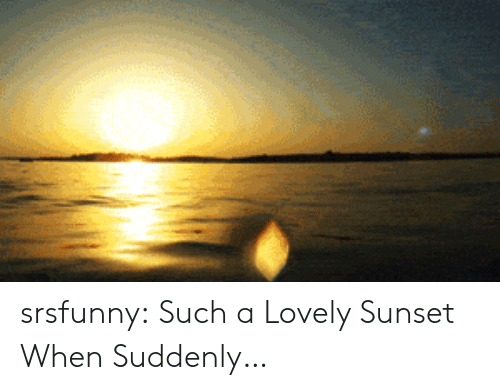 Tumblr, Blog, and Sunset: srsfunny:  Such a Lovely Sunset When Suddenly…