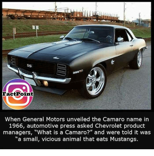 """Memes, Camaro, and Chevrolet: SS  Face tPoint  When General Motors unveiled the Camaro name in  1966, automotive press asked Chevrolet product  managers, """"What is a Camaro?"""" and were told it was  """"a small, vicious animal that eats Mustangs."""