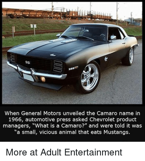 """Automotive: SS  When General Motors unveiled the Camaro name in  1966, automotive press asked Chevrolet product  managers, """"What is a Camaro?"""" and were told it was  """"a small, vicious animal that eats Mustangs. More at Adult Entertainment"""