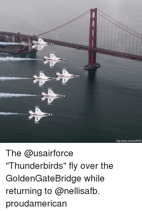 """Memes, 🤖, and Thunderbirds: SSgt Ashley Corkins/DIVDS The @usairforce """"Thunderbirds"""" fly over the GoldenGateBridge while returning to @nellisafb. proudamerican"""