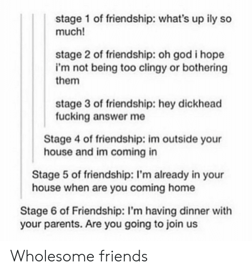 Im Coming: stage 1 of friendship: what's up ily so  much!  stage 2 of friendship: oh god i hope  i'm not being too clingy or bothering  them  stage 3 of friendship: hey dickhead  fucking answer me  Stage 4 of friendship: im outside your  house and im coming in  Stage 5 of friendship: I'm already in your  house when are you coming home  Stage 6 of Friendship: I'm having dinner with  your parents. Are you going to join us Wholesome friends