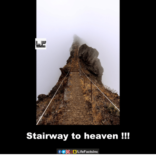 Memes, Stairway to Heaven, and 🤖: Stairway to heaven  f OpogLifeFactslnc