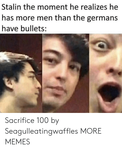 germans: Stalin the moment he realizes he  has more men than the germans  have bullets: Sacrifice 100 by Seagulleatingwaffles MORE MEMES