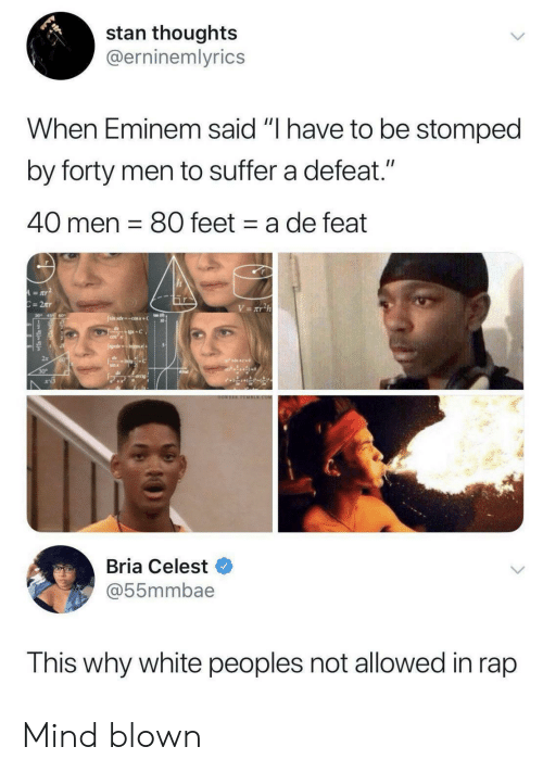 "suffer: stan thoughts  @erninemlyrics  When Eminem said ""I have to be stomped  by forty men to suffer a defeat.""  40 men 80 feet a de feat  A=aY  C=2Tr  V= xT2h  Jsimxdcosx+  +C  CO  JgdsIncos+  dIntoC  sin x  30  arcig  OOWEEE TOMBER.COM  Bria Celest  @55mmbae  This why white peoples not allowed in rap Mind blown"