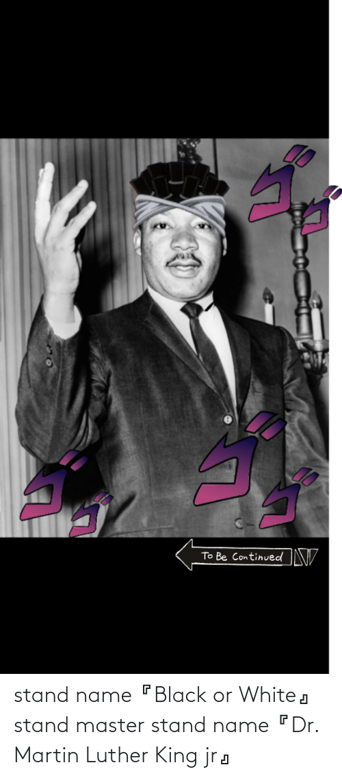 Martin Luther King: stand name『Black or White』 stand master stand name『Dr. Martin Luther King jr』
