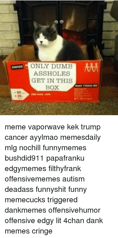 Boxing, Dumb, and Memes: STAPLES  a 20  ONLY DUMB  MM  ASSHOLES  GET IN THIS  BOX meme vaporwave kek trump cancer ayylmao memesdaily mlg nochill funnymemes bushdid911 papafranku edgymemes filthyfrank offensivememes autism deadass funnyshit funny memecucks triggered dankmemes offensivehumor offensive edgy lit 4chan dank memes cringe