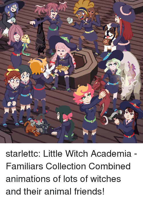 Friends, Target, and Tumblr: starlettc: Little Witch Academia - Familiars Collection Combined animations of lots of witches and their animal friends!
