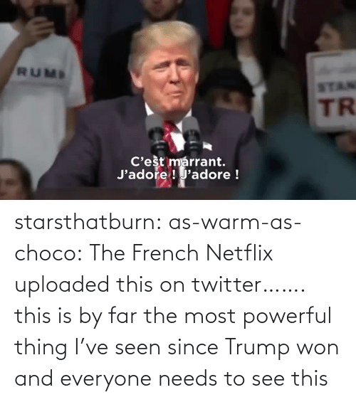 By Far: starsthatburn: as-warm-as-choco:  The French Netflix uploaded this on twitter…….   this is by far the most powerful thing I've seen since Trump won and everyone needs to see this