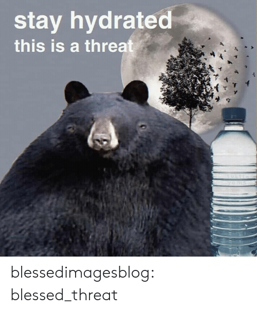 Blessed, Tumblr, and Blog: stay hydrated  this is a threat blessedimagesblog:  blessed_threat