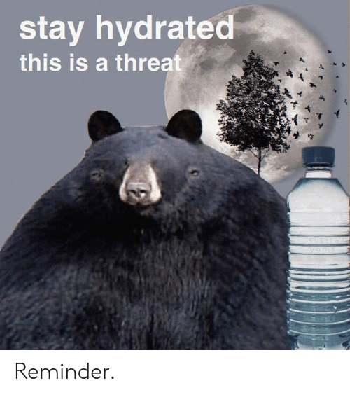 Dank Memes, Stay, and This: stay hydrated  this is a threat  ya ms Reminder.