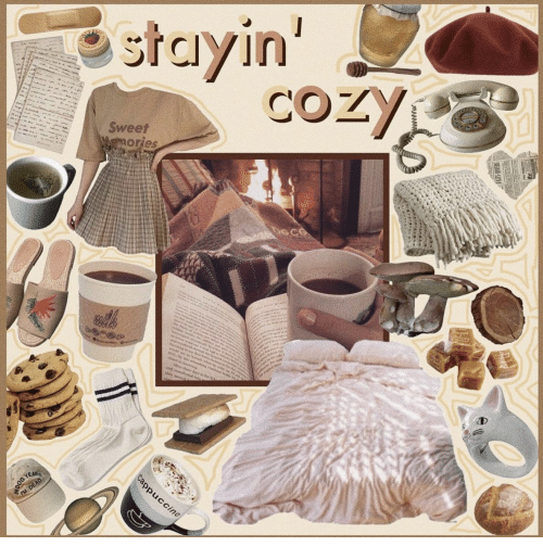 cozy: stayin'  COZY  -  Sweet  Wemories  me  a  w  ed e  sc nr  d sh  Ma  ad oudenred i  Cappuccino  YEAR