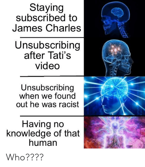Video, Racist, and Knowledge: Staying  subscribed to  James Charles  Unsubscribing  after Tati's  video  Unsubscribing  when we found  out he was racist  Having no  knowledge of that  human Who????