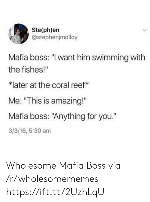 "Fishes: Ste(ph)en  @stephenjmolloy  Mafia boss: ""I want him swimming with  the fishes!""  later at the coral reef  Me: ""This is amazing!""  Mafia boss: ""Anything for you.""  3/3/16, 5:30 am Wholesome Mafia Boss via /r/wholesomememes https://ift.tt/2UzhLqU"