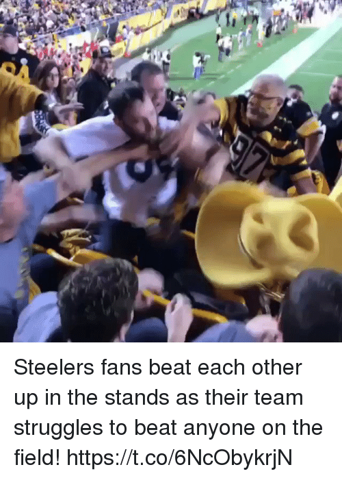 Football, Nfl, and Sports: Steelers fans beat each other up in the stands as their team struggles to beat anyone on the field!  https://t.co/6NcObykrjN