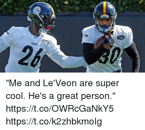 """Memes, Cool, and Steelers: Steelers  RIVENDALE  Steelers """"Me and Le'Veon are super cool. He's a great person."""" https://t.co/OWRcGaNkY5 https://t.co/k2zhbkmoIg"""