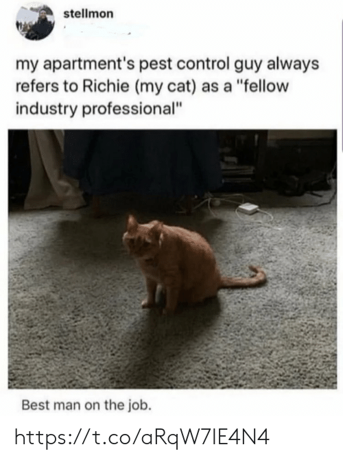 "Industry: stellmon  my apartment's pest control guy always  refers to Richie (my cat) as a ""fellow  industry professional""  Best man on the job. https://t.co/aRqW7IE4N4"
