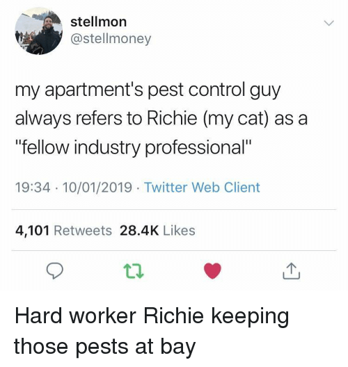 "Twitter, Control, and Cat: stellmor  @stellmoney  my apartment's pest control guy  always refers to Richie (my cat) as a  fellow industry professional""  19:34 10/01/2019 Twitter Web Client  4,101 Retweets 28.4K Likes Hard worker Richie keeping those pests at bay"