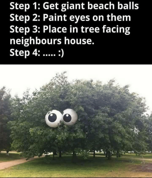 Beach, Giant, and House: Step 1: Get giant beach balls  Step 2: Paint eyes on them  Step 3: Place in tree facing  neighbours house.  Step 4::
