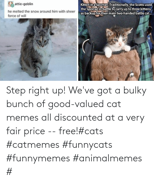 Bunch: Step right up! We've got a bulky bunch of good-valued cat memes all discounted at a very fair price -- free!#cats #catmemes #funnycats #funnymemes #animalmemes #