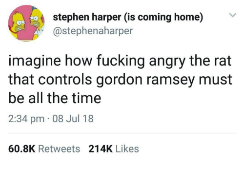 Fucking, Stephen, and Home: stephen harper (is coming home)V  @stephenaharper  imagine how fucking angry the rat  that controls gordon ramsey must  be all the time  2:34 pm 08 Jul 18  60.8K Retweets 214K Likes