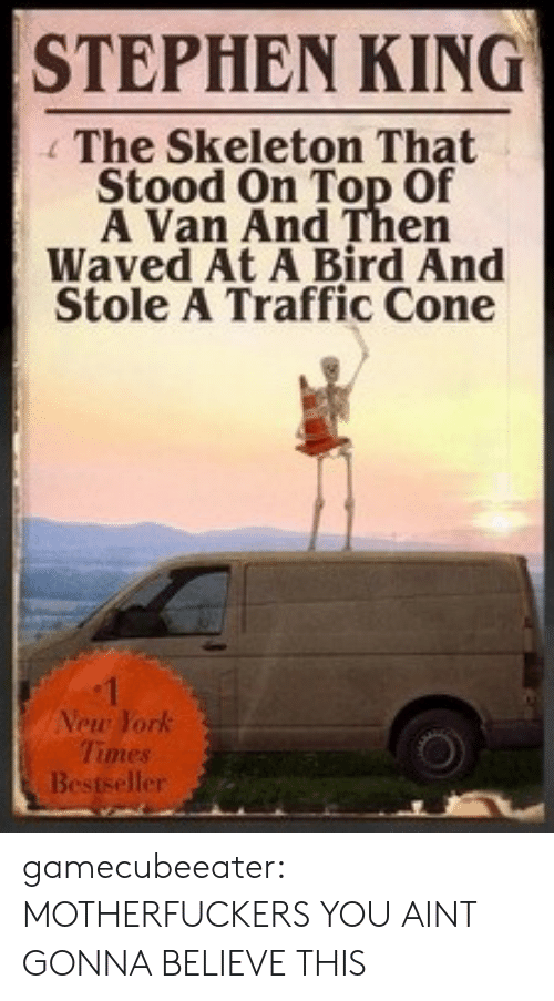Stephen, Traffic, and Tumblr: STEPHEN KING  The Skeleton That  Stood On Top Of  A Van And Then  Waved At A Bird And  Stole A Traffic Cone  Vew York  Times  er gamecubeeater:  MOTHERFUCKERS YOU AINT GONNA BELIEVE THIS