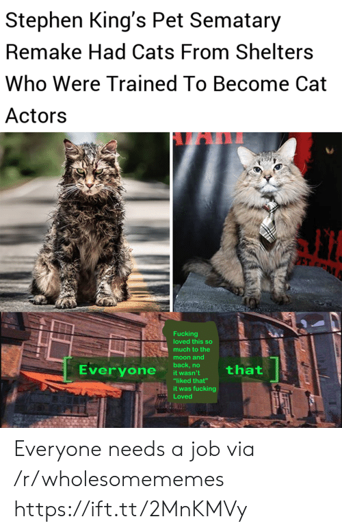 "Remake: Stephen King's Pet Sematary  Remake Had Cats From Shelters  Who Were Trained To Become Cat  Actors  PET M  Fucking  loved this so  much to the  moon and  back,no  Everyone  that  it wasn't  ""liked that""  it was fucking  Loved Everyone needs a job via /r/wholesomememes https://ift.tt/2MnKMVy"