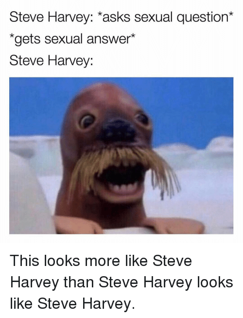 "Memes, Steve Harvey, and Asks: Steve Harvey: *asks sexual question*  ""gets sexual answer*  Steve Harvey: This looks more like Steve Harvey than Steve Harvey looks like Steve Harvey."